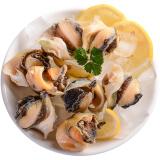 美加佳 冷冻土耳其海螺肉 250g 海鲜水产 *5件+凑单品 101.9元(合 20.38元/件)