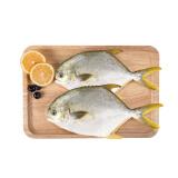 翔泰 冷冻无公害金鲳鱼 BAP认证 700g 2条 29.9,可优惠至14.95元/件 14.95