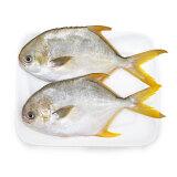 京东PLUS会员:翔泰 冷冻无公害金鲳鱼 900g 2条 *5件 +凑单品 149.9元包邮(299.9-150)
