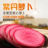 老帽家一级紫丹萝卜红皮萝卜 28.8元(需用券)