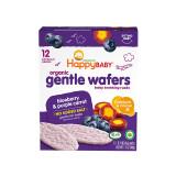 HAPPYBABY禧贝婴儿零食有机温和磨牙饼干蓝莓胡萝卜味(6+月龄适用)48g*5件