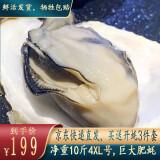 京东PLUS会员:IPH IPH蓝盒子 新鲜乳山生蚝 4XL10斤 129元包邮(双重优惠)