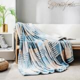 PLUS会员:京东京造 印花法兰绒毛毯 150*200cm 29.5元包邮(需用券)