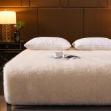 移动专享:Erwin Rommel 纯棉加厚冬季保暖羊毛床垫 150*200*10cm