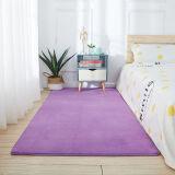 加厚客厅卧室地毯40X120厘米*2件