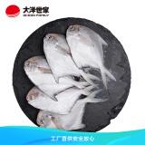 OCEAN FAMILY 大洋世家 舟山精品银鲳鱼1KG/袋(8-10条)平鱼 29.82元(需买4件,共119.28元包邮)