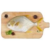 翔泰 冷冻无公害金鲳鱼 BAP认证 550g/袋 火锅食材 海鲜水产 *4件 79.6元(合19.9元/件)