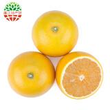 廉江红橙 6个装 约1kg 单果120g-200g *10件 89元包邮(需用券)
