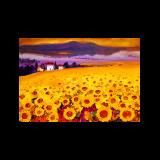 MO 法国让·米歇尔限量版画《风中的向日葵》 无框 装饰画 6000元