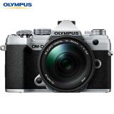 OLYMPUS 奥林巴斯 E-M5 Mark III + 14-150mm F4.0-5.6 II微型单电相机 7999元包邮(需用券)