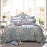 多喜爱(Dohia)床品套件 全棉印花简约风四件套 床单款 淡香伊人 双人 1.5米床 200*230cm 229元