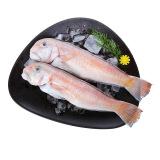 翔泰 冷冻二去马头鱼 (去鳃去内脏) 450g 2条 袋装 海鲜水产 *6件 139.4元(合23.23元/件)