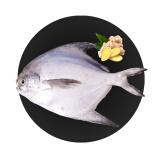 旺利珍 舟山冷冻鲳鱼400g 4条袋装 海鲜水产 *3件 29.5元(合9.83元/件)