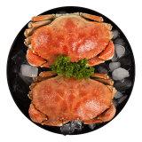 翔泰 加拿大进口熟冻黄道蟹/面包蟹 400g *10件 189.65元包邮(多重优惠)